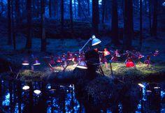 Lamps in woods