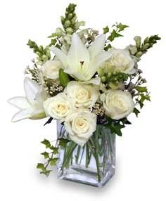 Ivy  White Snapdragons  White Roses  White Asiatic Lilies