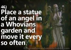 Things a Whovian should do