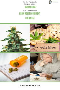 Wanting to try indoor farming of cannabis? If so, read this article for a beginning marijuana grower checklist and other cannabis grow ideas. Indoor Hydroponic Gardening, Indoor Farming, Hydroponics, Indoor Grow Lights, Best Led Grow Lights, Cannabis Growing, Cannabis Plant, Growing Weed Indoors, Evergreen Vines