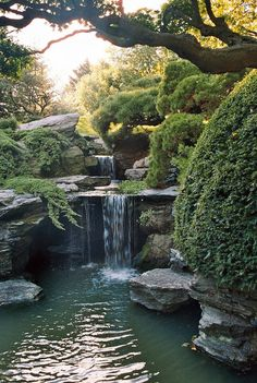 Waterfall at Brooklyn Botanical Garden   Flickr - Photo Sharing!