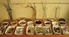 natural materials display and exploration. Our pre-school is doing this right now using shadow boxes and a heavy dose of autumn inspired natural materials