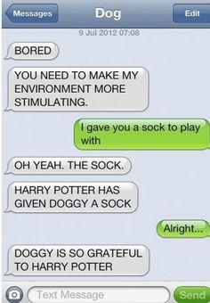 Harry has give Doggy a sock hahah #dog texts Harry Potter Texts, Harry Potter Love, Funny Dog Texts, It's Funny, Humor Texts, Hilarious Texts, Funny Captions, Doug Funnie, Animals