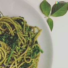 Its a Pasta Pesto kinda day. Check out this Avocado Pesto recipe from @thehealthygourmand to add to pasta chicken salads. So easy... Looks delish. #healthyfats