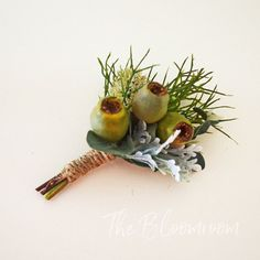 Gum nut boutonniere / Green / Australian Native / Groom / Rustic boutonniere / Men's buttonhole / Groom's boutonniere / Groomsmen buttonhole