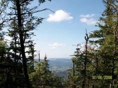 .: ADAM MATUSZYK :. - Babia Góra - sierpień - 2008/babia-gora 14 #Babiogórski_Park_Narodowy
