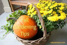 Fall Gardening Tips | Nature Moms Blog