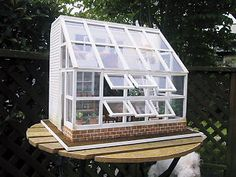 Miniature greenhouse.