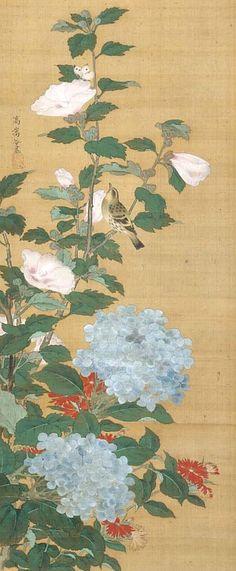 Kô Sûkoku  Bird and Flowers  18th century