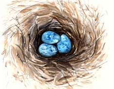 """Check out new work on my @Behance portfolio: """"Eggs"""" http://be.net/gallery/62827999/Eggs"""