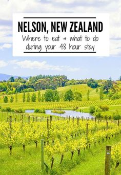 Don't miss a visit to Nelson during your New Zealand visit! This charming town has easy access to wineries, beaches and the stunning Abel Tasman National Park. Check out these tips for 48 hours in Nelson, NZ.   www.eatworktravel.com - The luxury, adventur