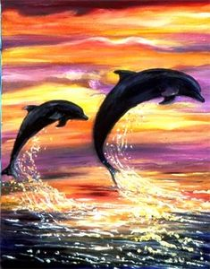 Dolphins with sunset