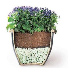 Why didn't I think of THAT!:) Tips for Moving Heavy Potted Plants