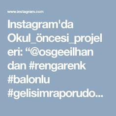"""Instagram'da Okul_öncesi_projeleri: """"@osgeeilhan dan #rengarenk #balonlu #gelisimraporudosyası 🎈🎈🎈🎈 #onceokuloncesi #okulöncesialbümü"""""""
