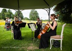 String trio playing under wedding gazebo at Coworth Park, Ascot.  Photo used with the kind permission of Jon from Apple Photography www.applephotography.co.uk