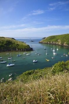 size: Photographic Print: Solva Harbour, Pembrokeshire, Wales, United Kingdom, Europe by Billy Stock : Entertainment Beautiful Places To Travel, Best Places To Travel, Cool Places To Visit, Places To Go, Pembrokeshire Wales, Sailing Regatta, Places In Europe, Snowdonia, England And Scotland