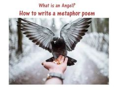 This poetry resource encourages your pupils to think of a set of questions and then come up with suitable metaphorical answers. It consists of a comp. Diary Writing, Writing Poetry, Metaphor Poems, What Is An Angel, Teacher Pay Teachers, Teacher Newsletter, Teaching Resources, Cyanotype, Age