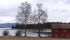 Hamar, Norway Norway, Cabin, House Styles, Travel, Outdoor, Home Decor, Outdoors, Viajes, Decoration Home