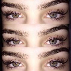 Hautpflege How to Curl Your Eyelashes -From Novice to Expert! Eyebrows Goals, How To Color Eyebrows, Bushy Eyebrows, Natural Eyebrows, Eye Brows, Eyebrow Shaper, Eyebrow Brush, Brow Gel, Eyebrow Makeup
