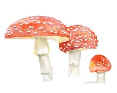 Toadstools watercolor painting giclee print reproduction. Just right for the mushroom enthusiast or even to go with the woodland themed nursery. LANDSCAPE (horizontal) orientation. Printed on fine art