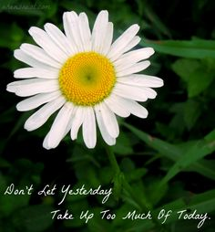 Don't Let Today - Monday Quotes #quote