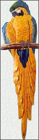 Parrot Wall Art  Blue and Gold Macaw Parrot  by TropicAccents