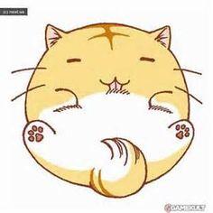 Poyo a circle cat
