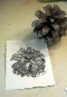pinecone step by step using water soluble pencil