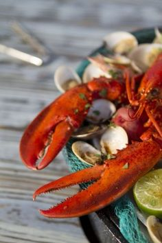 summertime lobster feast at the crab shack Seafood Dishes, Fish And Seafood, Seafood Recipes, Cooking Recipes, Fresh Seafood, Steam Seafood, Seafood Platter, Grilled Seafood, Mango Salsa