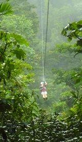 Go zip lining in Jamaica