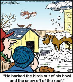 Dog Comics, Cute Comics, Watch Cartoons, Dog Cartoons, Bedtime Prayer, Bulldog Breeds, Great Dane Dogs, Cartoon Dog, Siamese Cats