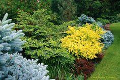 ...The ever-amazing Conrad Art Glass and Gardens!