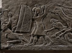 Assyrian warriors shelter behind shields. Battle against Arabian tribes with their camels. Stone bas-relief (7th BCE) from the palace in Niniveh, Mesopotamia (Iraq).
