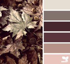 leaf tones (design seeds) – Design is art Design Seeds, Colour Pallette, Colour Schemes, Color Patterns, Color Combinations, Decoration Palette, Color Balance, Color Stories, Color Swatches