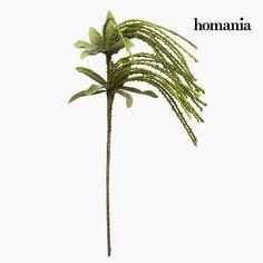 Mousse, Decoration, Plants, Green, Products, Flowers, Decor, Decorations, Plant