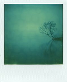 Photography, Polaroid, instant film in Nature, Scenery, Waterscape, lake, river, SX-70 - Image #570396