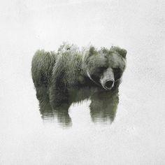 Nos rechiflan los animales con doble exposición de paisajes del creativo Said Dagdeviren. Este proyecto nace con la intención de denunciar la explotación negativa del ser humano de las zonas natura...