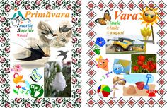 1st Day Of School, Calendar, Kids Rugs, Seasons, Baseball Cards, Album, Floral, Centre, Blog