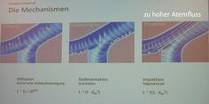REHA DACHMEETING  Die Physik der Inhalation Inhalation, Desktop Screenshot, Physics, Projects
