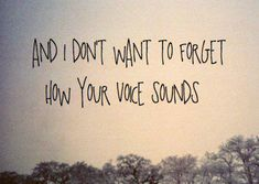 It terrifies me that I'll forget what your voice sounds like