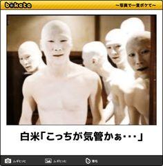 【ボケ】白米「こっちが気管かぁ・・・」 - ボケて(bokete)