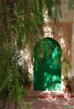 Erriadh un des plus anciens villages de l'ile de Djerba porte verte à l'ombre du poivrier