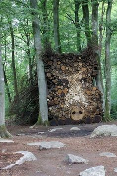 Sélection de Land Art -- Looks like a Boar made from cut Trees / Tree Trunks