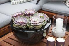 Modern Kitchen Design, Outdoor Gardens, Stuff To Do, Succulents, Planters, Simple, Sort, Amazing, Balcony