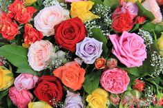 Top 10 Most Popular Flowers to Plant in Your Garden. published in TopTeny magazine Nature - Flowers are beautiful plants that have a big variety of colors. In addition to the vibrant and beautiful color. - rose-bouquet-different-colors - Most Popular Flowers, Amazing Flowers, Beautiful Roses, Different Color Roses, Red And Yellow Roses, Order Flowers Online, Planting Roses, Flower Images, Rose Bouquet