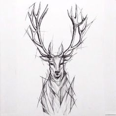 Like the sketch but without the angular extra lines around perimeter - My list of beautiful animals Tattoo Sketches, Tattoo Drawings, Body Art Tattoos, Art Sketches, Sleeve Tattoos, Tatoos, Stag Tattoo Design, Tattoo Designs, Future Tattoos