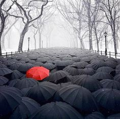 Image discovered by Sally-Anne Carroll. Find images and videos about black, red and umbrella on We Heart It - the app to get lost in what you love. Red Umbrella, Under My Umbrella, Surreal Photos, Photographs, Surrealism Photography, Entrepreneur Inspiration, Foto Art, We Are The World, Psychedelic Art