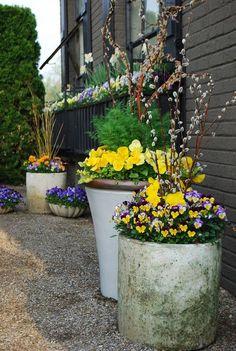 4 Container Gardening (Soil) Tips That You Need To Know Now Best of Haus und Garten: 4 Container Garten (Boden) Tipps, die Sie brauchen, um … Container Flowers, Flower Planters, Container Plants, Container Gardening, Flower Pots, Gardening Tips, Flowers Garden, Outdoor Planters, Garden Planters
