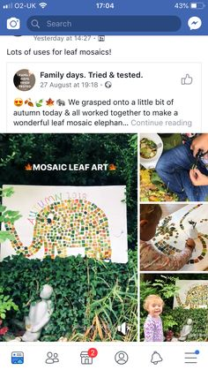 Outdoor Learning, Forest School, Family Day, Continue Reading, Mosaic, Activities, Mosaics, Tile Mosaics