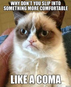 Grumpy Cat Smiling | Mr Motivator: 10 Funny Memes To Make You Smile